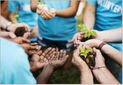 Volunteer hands with small trees in them