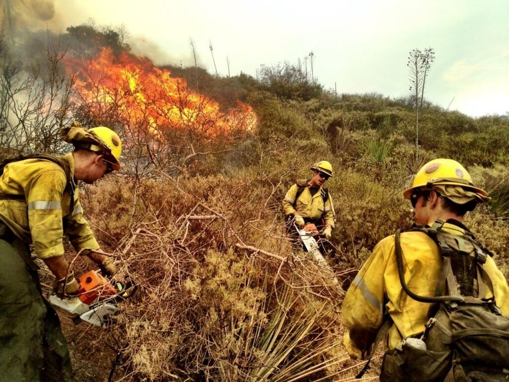 wildland firefighters in full firefighter gear put out a brush fire.