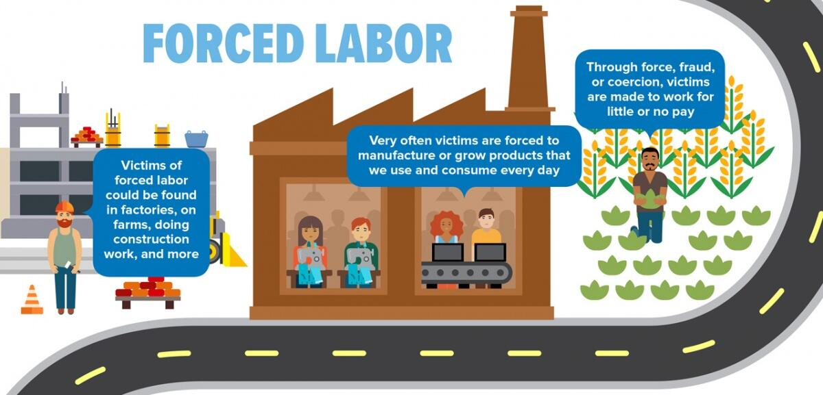 Forced Labor.  Victims of forced labor could be found in factories, or farms, doing construction work, and more.  Very often victims are forced to manufacture or grow products that we use and consume every day.  Through force, fraud, or coercion, victims are made to work for little or no pay.