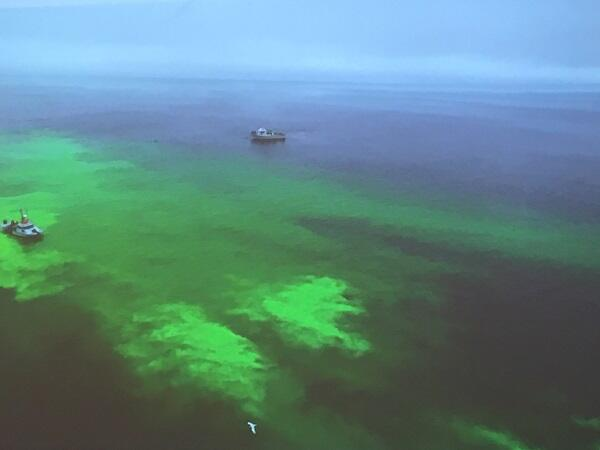 Researchers simulated an oil spill by releasing a neon green biodegradable dye from a vessel of the Monterey Bay Aquarium Research Institute (left), while representatives from the Coast Guard, ADAC, WHOI, S&T and other organizations watched from another boat on the right. Photo by U.S. Coast Guard.