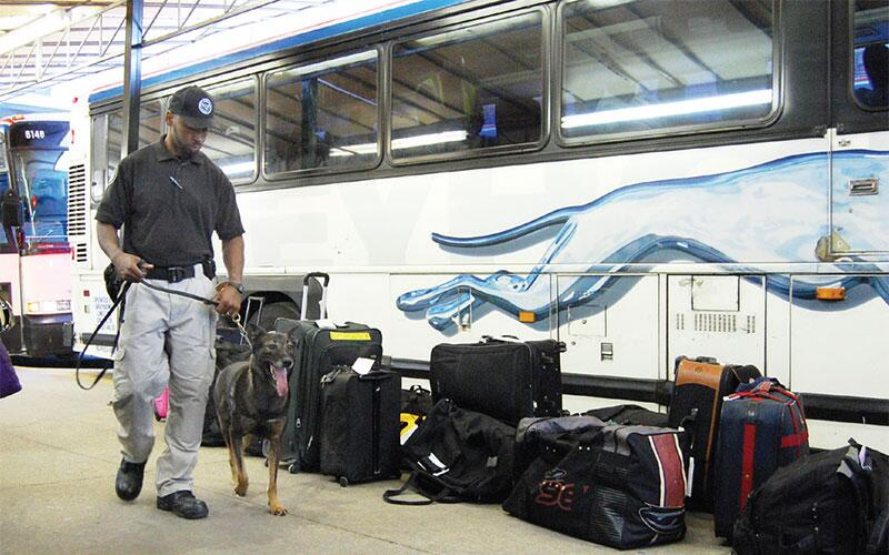 Officer with K-9 performing baggage inspection