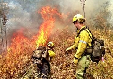 Firefighters fight a wildland fire