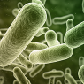 Digital images of chemical or biological agents