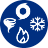 Natural Disaster Icon